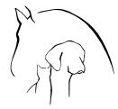 logo vandermaten tierheilpraxis